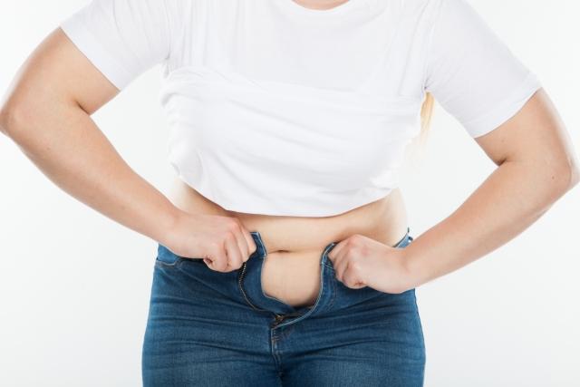 腸内環境 太りやすい ダイエット