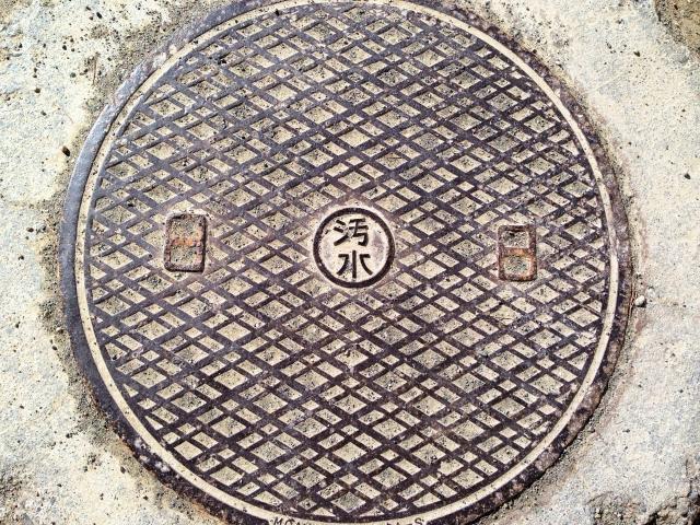 日本橋のネズミ駆除:公共的な場所